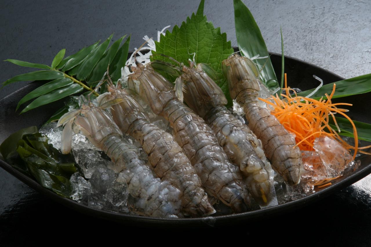 日間賀島のしゃこ「刺し身」の写真