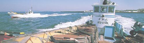 海に育まれた漁業の海
