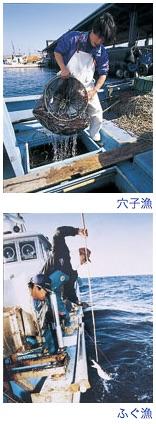 穴子漁、ふぐ漁